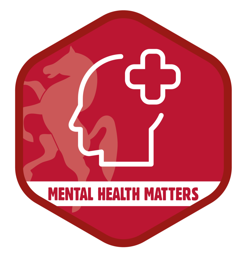 Good Mental Health Matters - available 1st May onwards